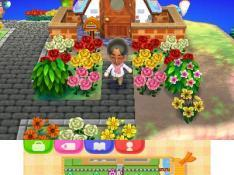 Animal Crossing: New Leaf Special Tools